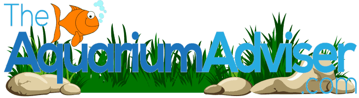 The Aquarium Adviser