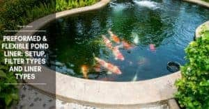 Types of Pond and Pond Liner