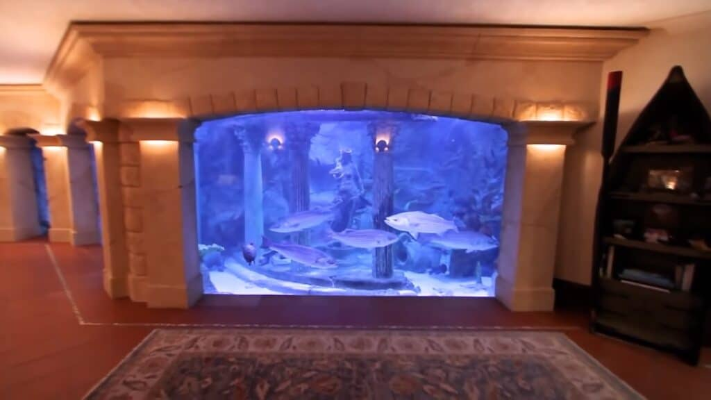 Sal Cannizzaro stunning home aquarium