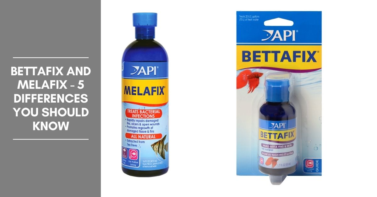 Bettafix and Melafix - 5 Differences You Should Know